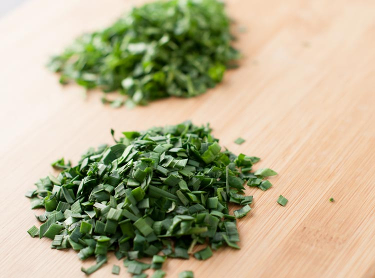 fresh herbs are crucial for a great salsa