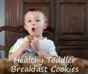 healthy-toddler-breakfast-cookies