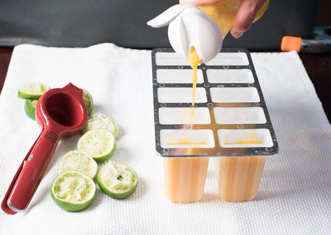 best popsicle molds - how to make popsicles