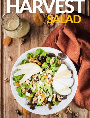 fall harvest salad with mixed greens, walnuts, dried cranberries, apricots, blue cheese, and apples
